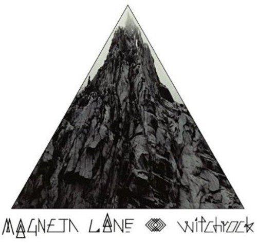 Magneta Lane on Selective Memory